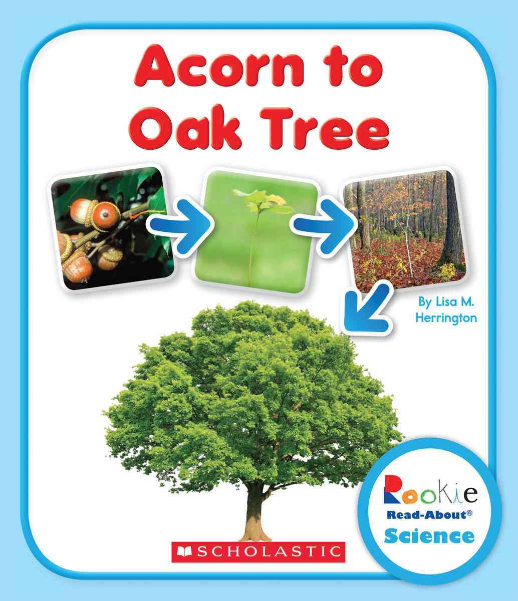 Acorn to Oak Tree By Herrington, Lisa M.